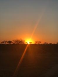 sunshine5